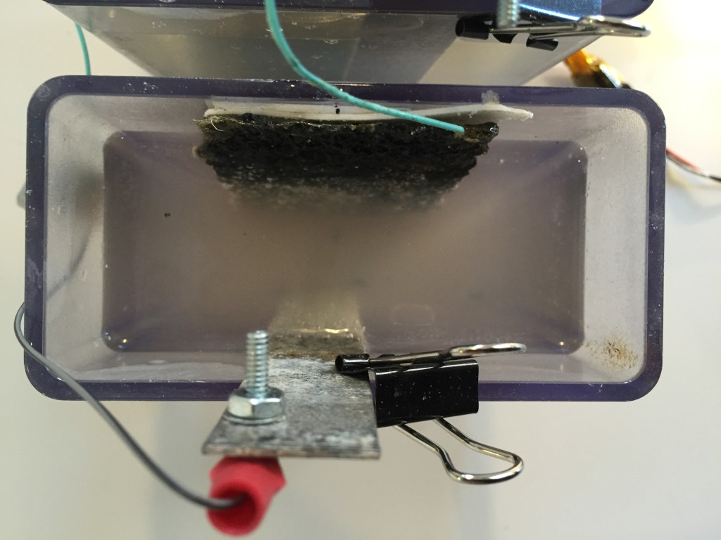 The Magnesium and Carbon electrodes in salt water